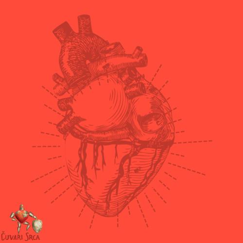 Što je kolesterol i zašto je važan za zdravlje srca?
