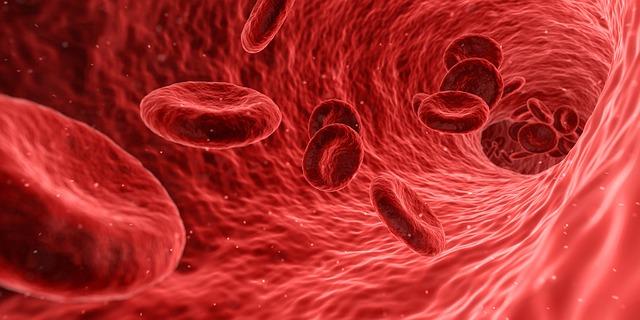 Prevencija bolesti srca i krvnih žila